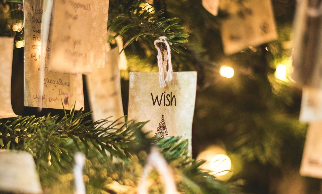 January 2020 Sanctuary Meeting – Christmas and Special Occasions – Dr Mario Naso